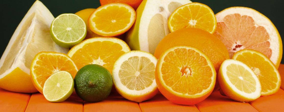 citrus-exporters-kirkwood-south-africa