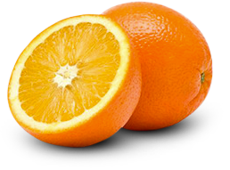 Citrus-exporters-south-africa