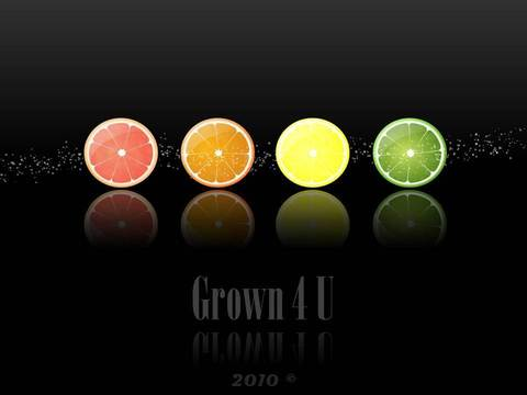 grown4u products south africa 1